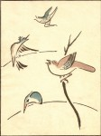 Isaac-Songbirds